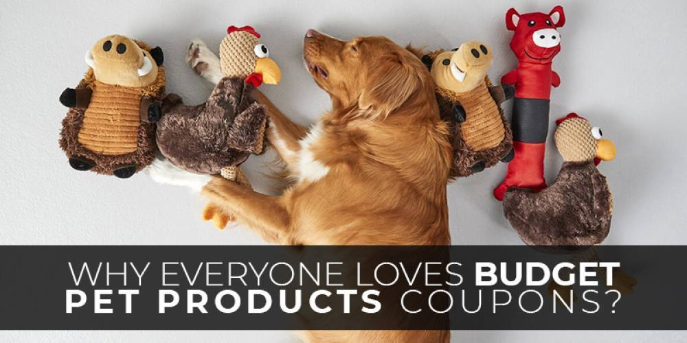 Why Everyone Loves Budget Pet Products Coupons?