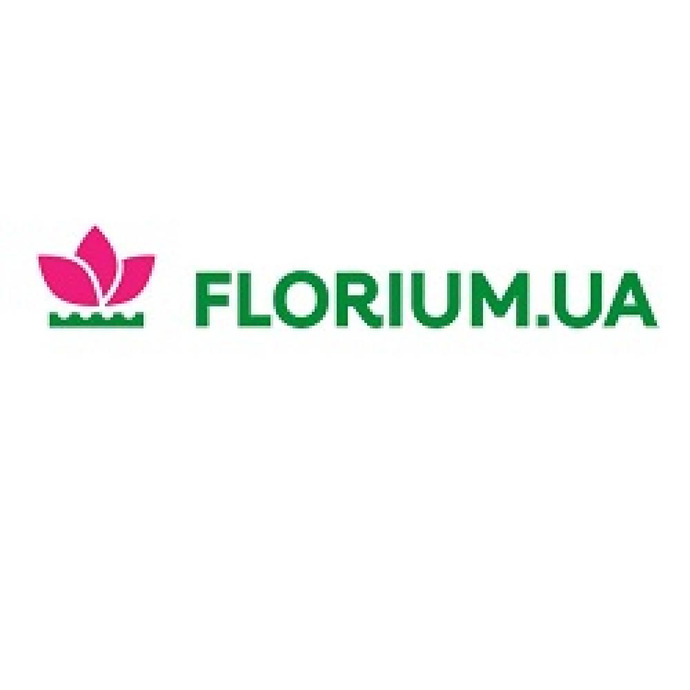florium-coupon-codes