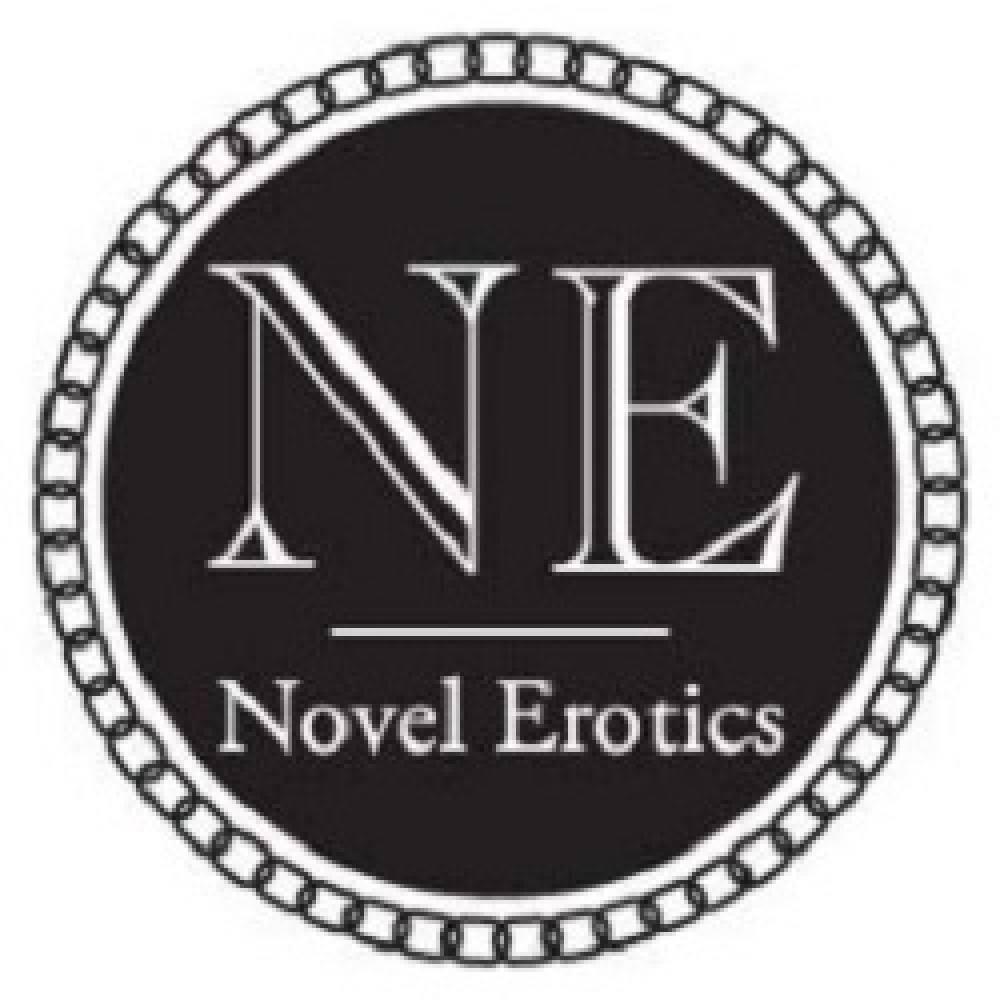 Novel Erotics